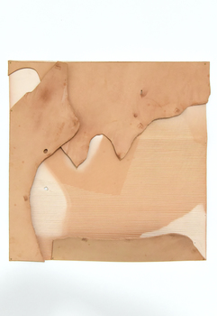 Tongji Philip Qian Weathering Vegetable-tanned leather